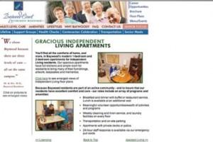 Web Site Organization & Content