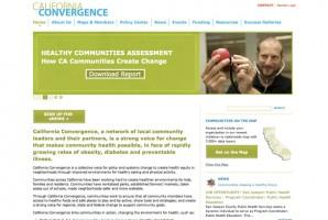 Web Site Development & Content Download PDF
