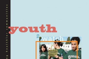 Youth Profiles and Action Opportunities Download PDF
